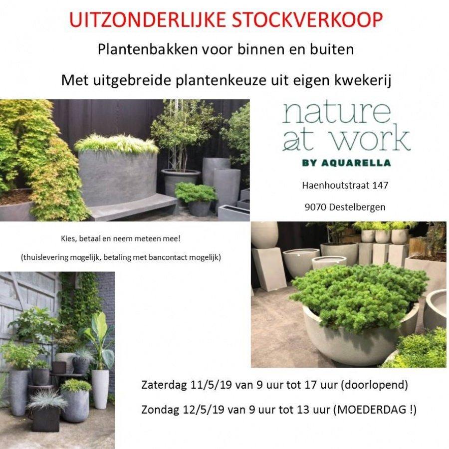 187c2bb3ec9 bloemen planten